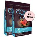 Wellness Core Kutya M/L Felnőtt Óceáni Lazac és Tonhal 2 x 10 kg