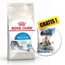 Royal Canin INDOOR 27 - macskatáp bent élő macskáknak 10kg + AJÁNDÉK