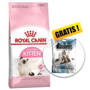 Royal Canin KITTEN 10 kg + AJÁNDÉK