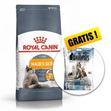 Royal Canin HAIR & SKIN CARE 10 kg  + AJÁNDÉK