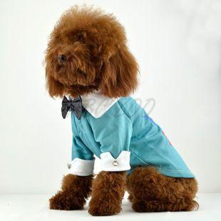 Kutya trikó, kék - galléros, csokornyakkendővel, XXL