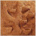 Terrárium hátlap - kókuszrost modul, 50 x 50 cm