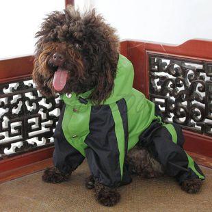 Kutya overál, vízhatlan, zöld - fekete, L