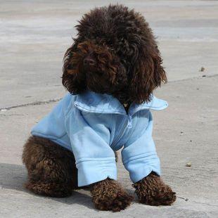 Pulóver kutyák részére, cipzáras - kék színben, S