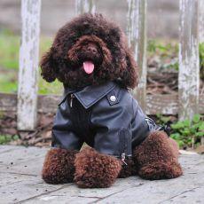 Kutyakabát, műbőrből - fekete, sas minta, XXS