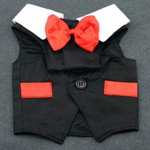 Kutya szmoking - piros-fekete színben, XL