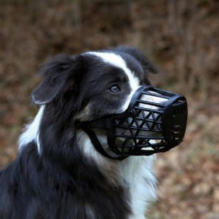 Kutya szájkosár, műanyag - XL nagyság, 31 cm