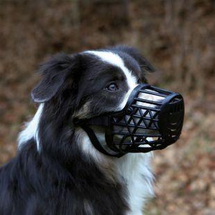 Kutya szájkosár, műanyag - M méret, 20 cm