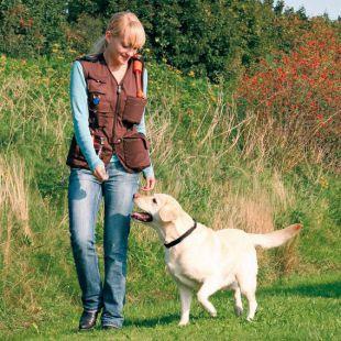 Mellény Dog activity, kiképző - barna, XL
