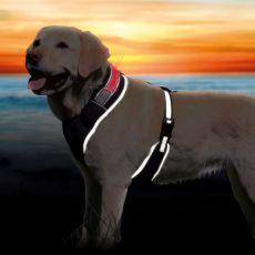 Hám kutyának világító csíkkal S-M, 45-60cm