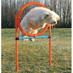Ügyességi akadály kutyáknak, kör 115x65cm