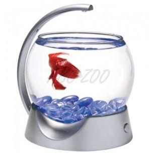 Akvárium harcoshal számára, gömb 1,8L - szürke