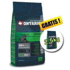Ontario Junior Large 13kg + 2,5 kg INGYEN