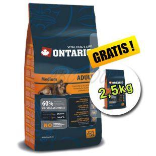 Ontario Adult Medium 13 kg + 2,5 kg ajándék