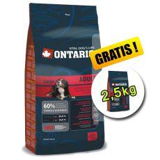 Ontario Adult Large 13 kg + 2,5 kg INGYEN