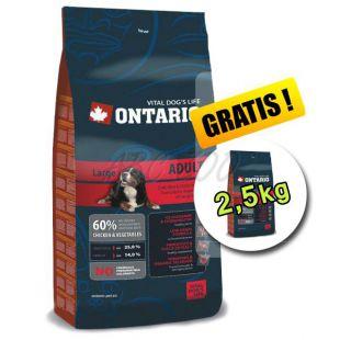 Ontario Adult Large 13 kg + 2,5 kg ajándék