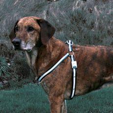 Fényvisszaverős kutyahám - villogó,  M-L nagyság