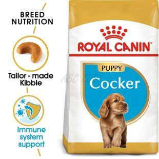ROYAL CANIN COCKER JUNIOR - 3 kg