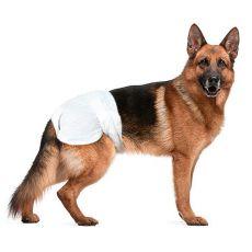 Pelenkák kutyák részére - 12 db, méret XL