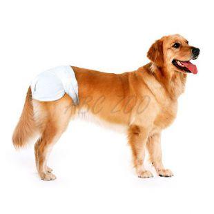 Pelenkák kutyák részére - 12 db, méret L