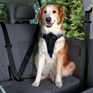Biztonsági öv autóba kutyáknak - XL