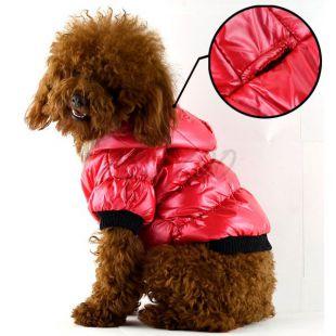 Viharkabát kutyáknak - tollas, piros,  L