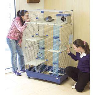 Kalitka rágcsálóknak SARA 82 C3, kék - 82 x 51 x 142 cm