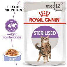 Royal Canin STERILISED in Jelly 12 x 85 g - zselé alutasakban